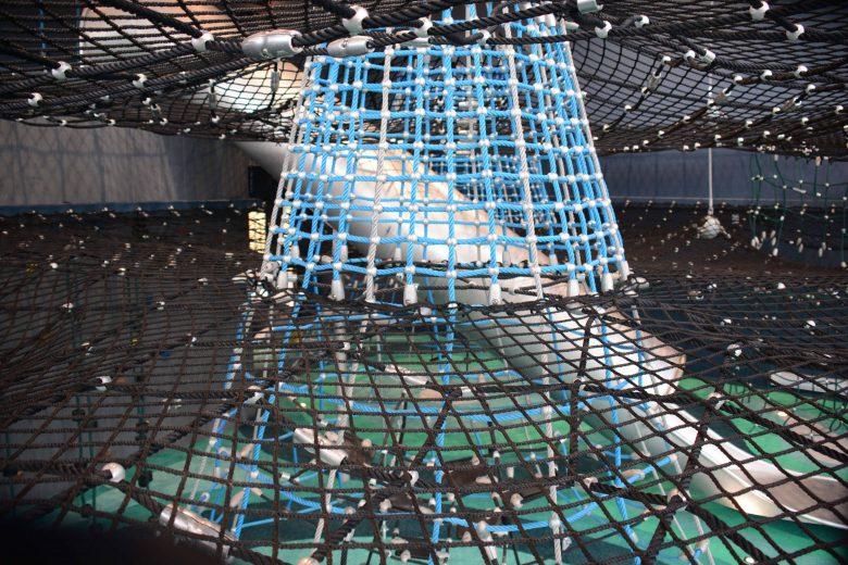 Netztrichter verbindet die Spielebenen- Berliner Seilfabrik
